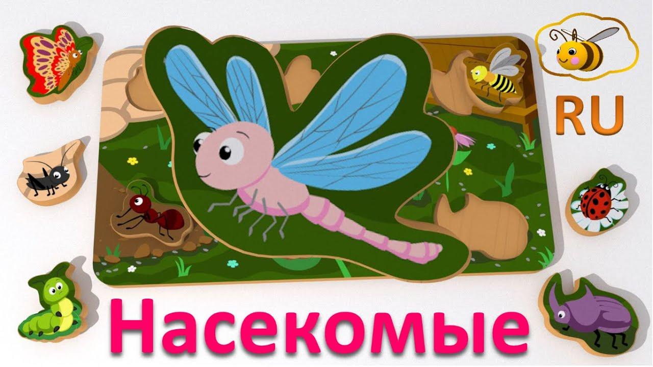 Малышман ТВ — Учим насекомых. Игрушки для малыша: пазл сортировщик.