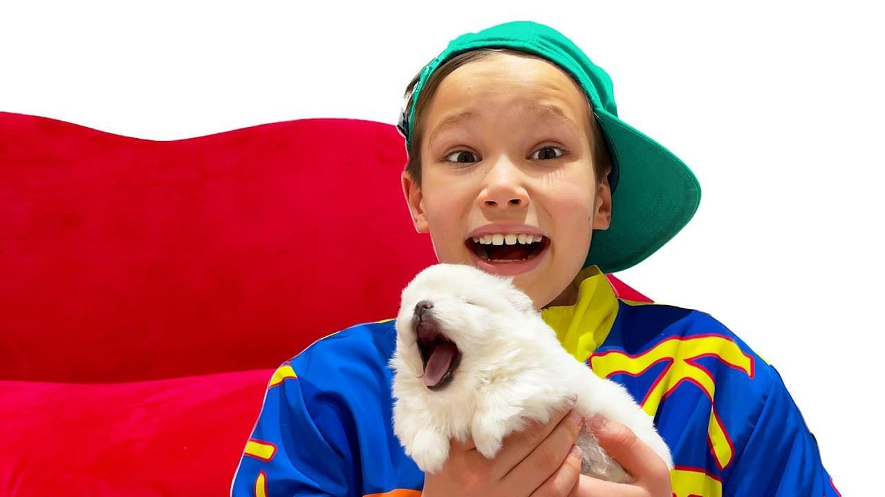 Мистер Макс — Катя и Макс нашли маленького щеночка на пороге своего дома