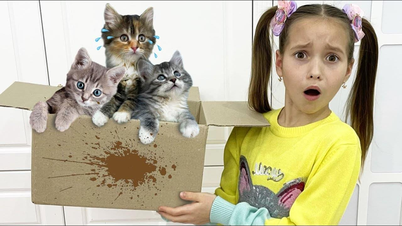 Маленькая Мисс София — Sofia and funny stories in her house about pets kittens and dog