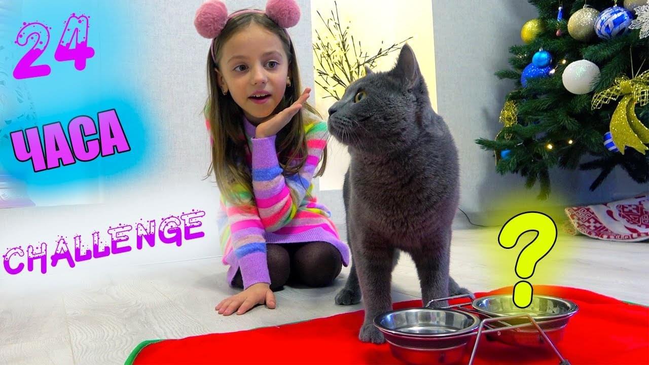 Май Литл Настя — 24 часа ЧЕЛЛЕНДЖ Питомец котёнок ТИМ управляет ДНЁМ Насти