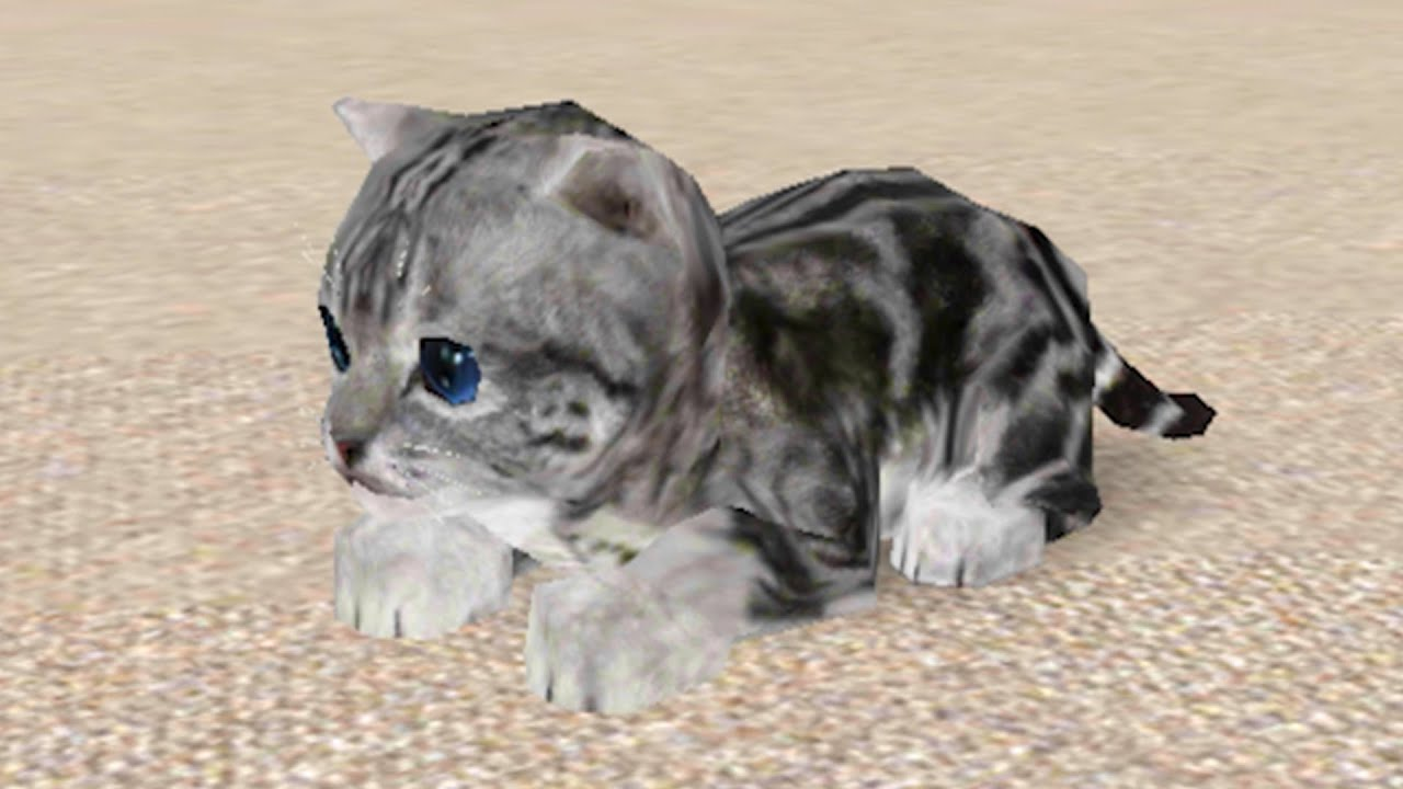 Пурумчата — Кошка Симулятор #3 Пурумчик как Лев. Новые котята в семье котов Кида в Cat Simulator на пурумчата