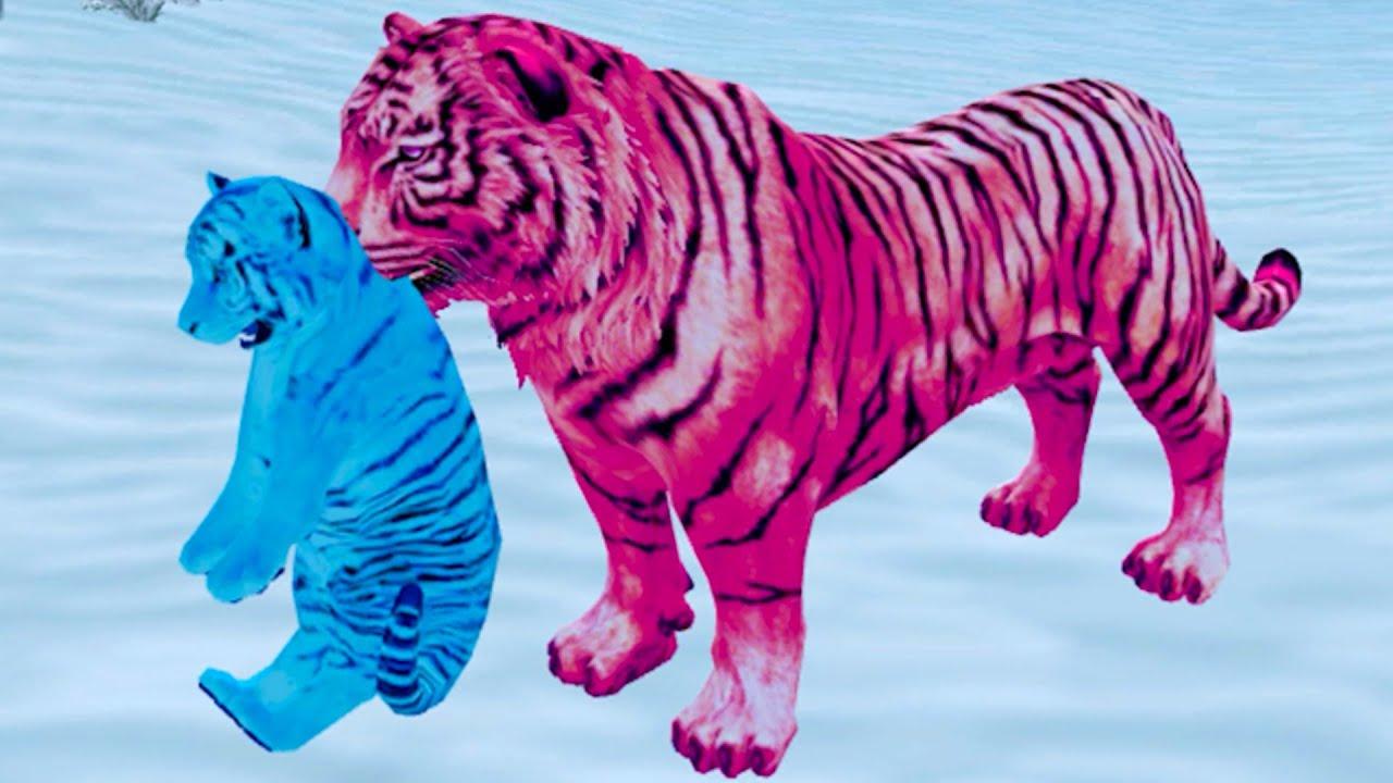 Пурумчата — Симулятор Семьи Белого Тигра #2 Розовый тигренок Кида и Новые Уровни в Симе дикой кошки на Пурумчата