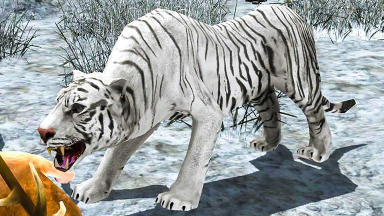 Пурумчата — Симулятор Странного Снежного ТИГРА с Кидом #1 Баги в Arctic Tiger Simulator на ПУРУМЧАТА