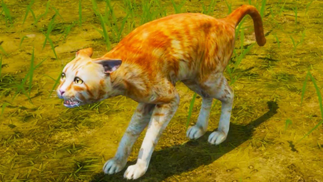 Пурумчата — Симулятор Кошки Мяу #1 Новый сим про котов. Ферма Cat Simulator Meow на пурумчата
