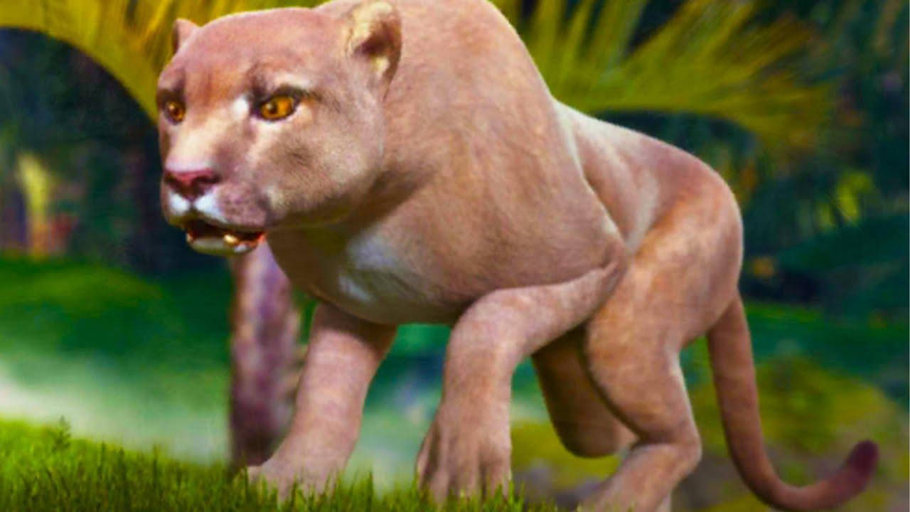 Пурумчата — СИМУЛЯТОР Пантеры #1 Новый Сим дикой кошки с Кидом. Анаконда и ягуары в Panther Online на ПУРУМЧАТА