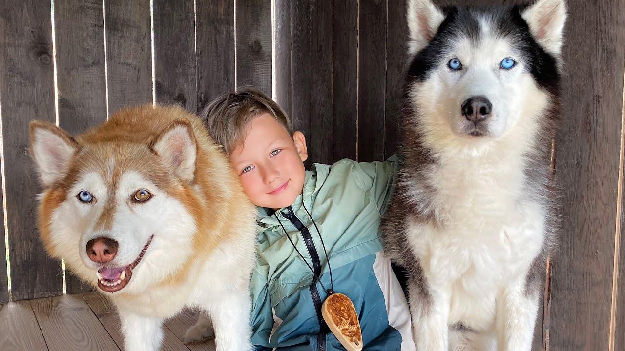 Супер Сеня — КУПИТЕ мне эту Собаку — Новые приключения на Алтае 2021