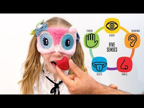Dad teaches Nastya 5 human senses