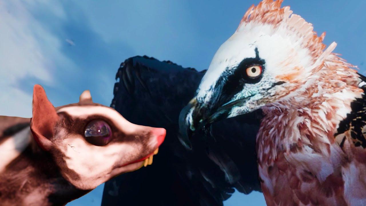 Пурумчата — Симулятор Летающей Белки Поссум-Летяга #5 Финал AWAY The Survival Series на пурумчата